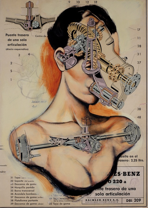 Serie Anatomías Fernando Vicente