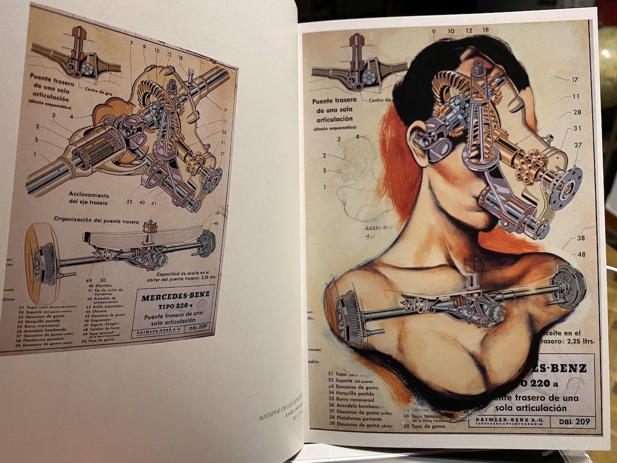 Catálogo serie Anatomías