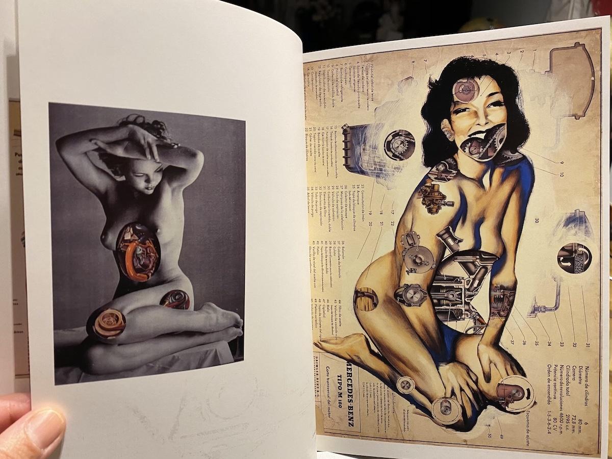 Catalogo Anatomias Fernando Vicente