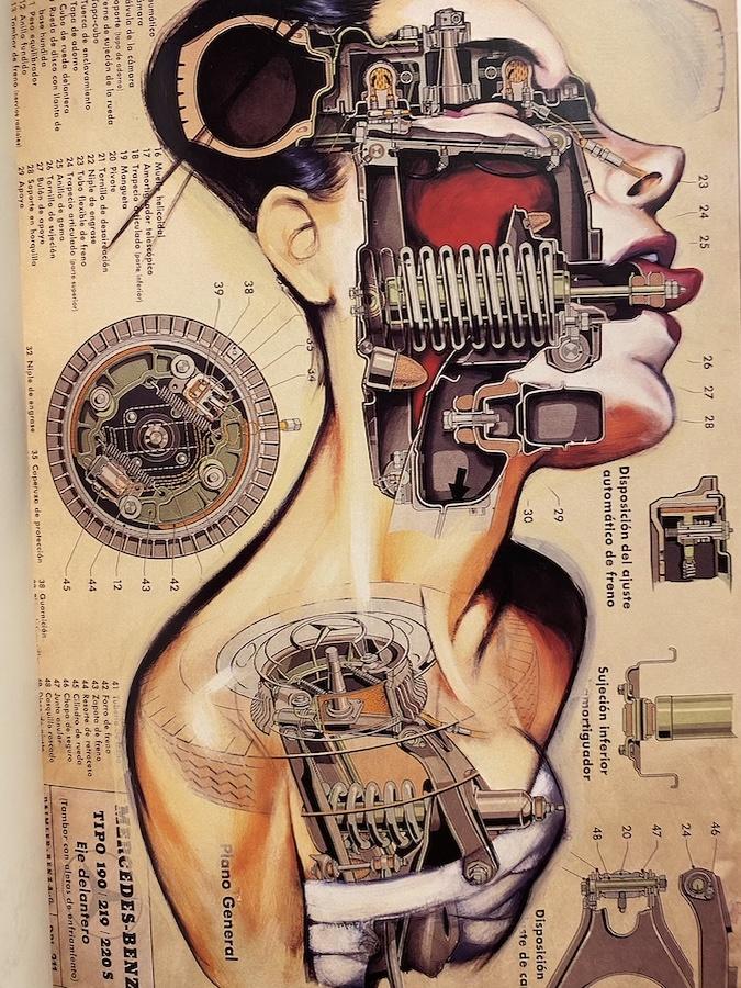 Catalogo Anatomias Fernando Vicente6